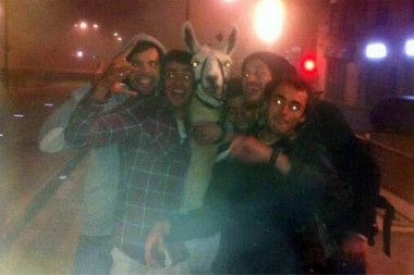 drunkwithllama2